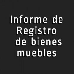 Tr mites gestoria y asesoria del valles informes online for Registro de bienes muebles sevilla